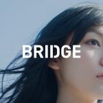 美容業界専門広告代理店「BRIDGE」契約サロン成功事例