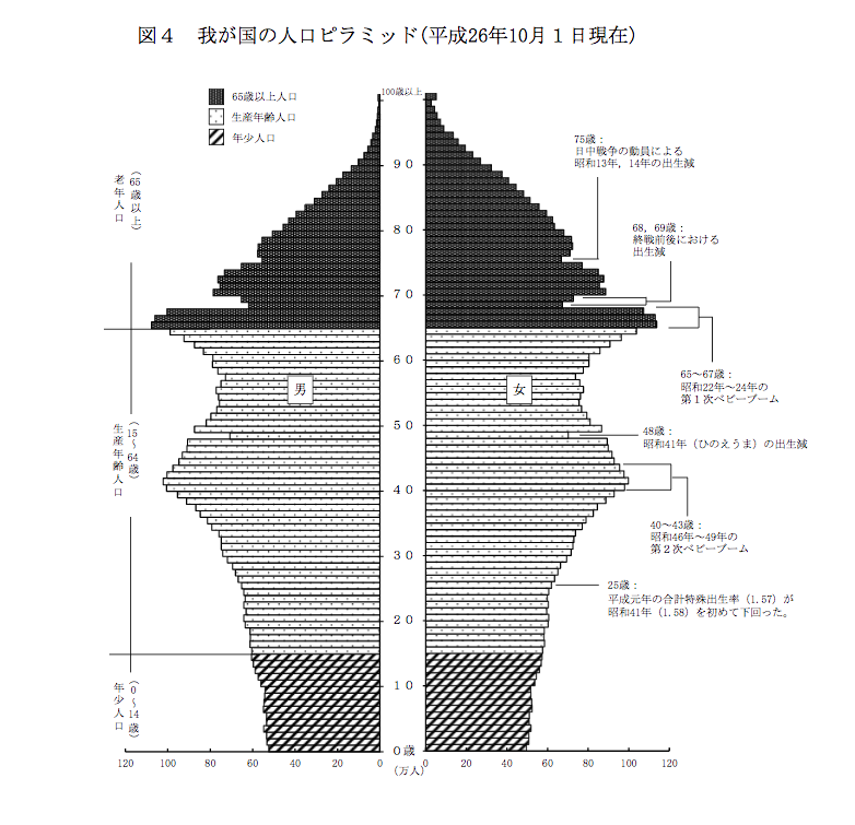人口ピラミッド ボリュームゾーン 美容人口